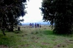 Gathiuru Tree Planting
