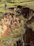 MyCOE Ground Truthing010 (1 of 1)
