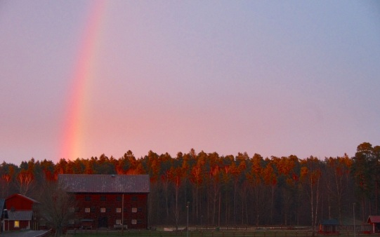 Sunsets and rainbows3