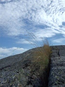Nature Reserve Rocks