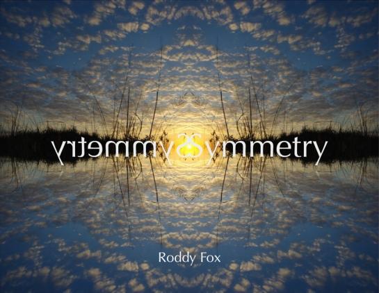 Symmetry Slide 1