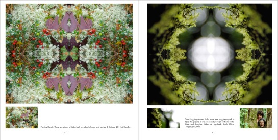 Symmetry in Nature: Mosses and Lichens