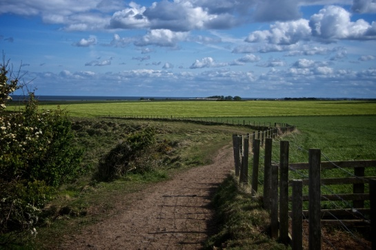 Northumberland Coastal Path