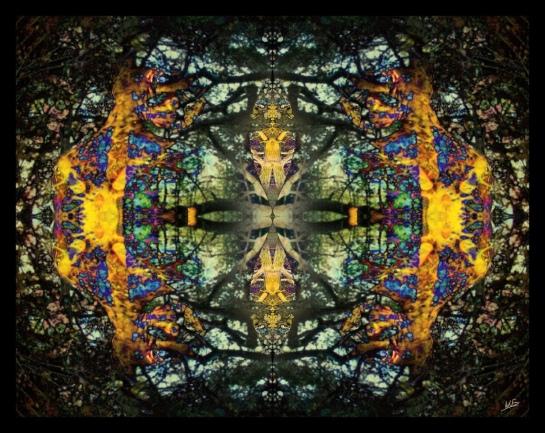 Äsperöd Gnarly Stained Glass Symmetry