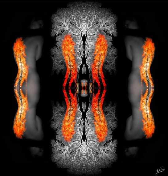 Triptych Flame 1 Double
