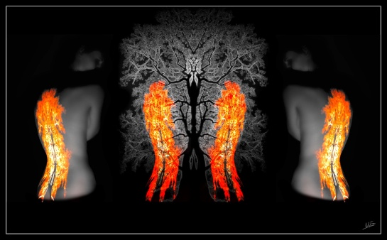 Triptych Flame 1
