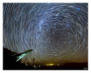 Summer Nights 4: Pride Rock Star Trails