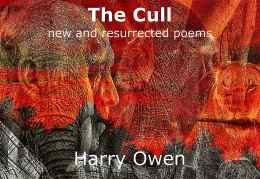 Cover Concept for 'The Cull'