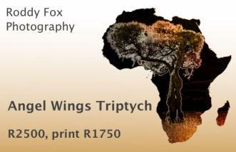 Angel Wings Triptych Price