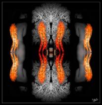 Angel Wings Triptych