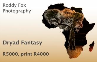 Dryad Fantasy Price