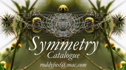 Catalogue: Symmetry Exhibition, National Arts Festival 2017