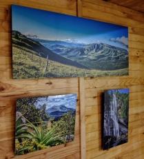 Hogsback Landscapes