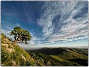 WESSA Natural Heritage Grahamstown Makhanda
