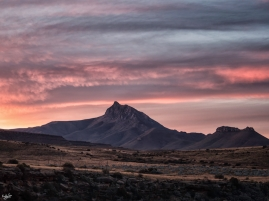 #Ganora #Karoo #Karoolight #Karooheartland