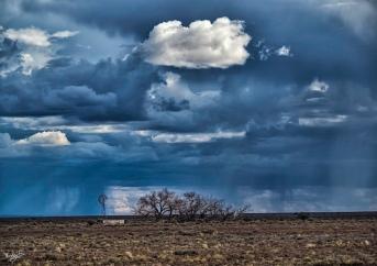 #Karoo #Karoolight #Karooheartland
