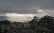Kwandwe, WESSA, Natural Heritage, RoddytheFox, Wildlife, Landscape