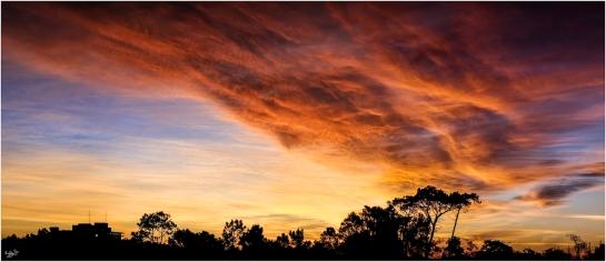 1820 Settlers Sunset, Grahamstown Makhanda