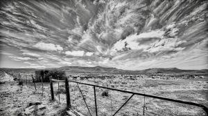 Gate, sheep and sky, Blaauwater Siding, Nieu-Bethesda, Karoo