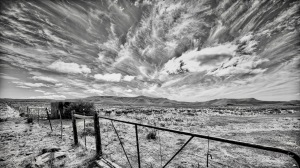 Gate, sheep and sky, Blaauwater Siding, Nieu-Bethesda, Karoo