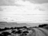 Misty Road, Kranskop Loop, Mt Zebra National Park