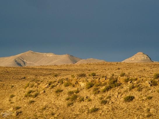 The golden light of a Karoo sunset