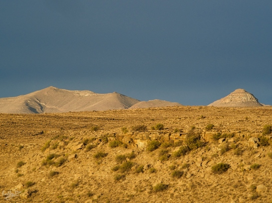 The golden light of a Karoo sunset