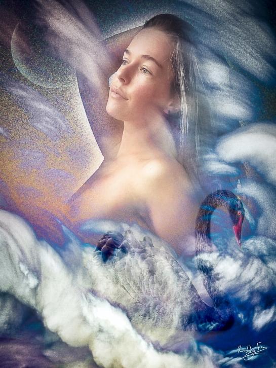 Black Swan fantasy art magical realism