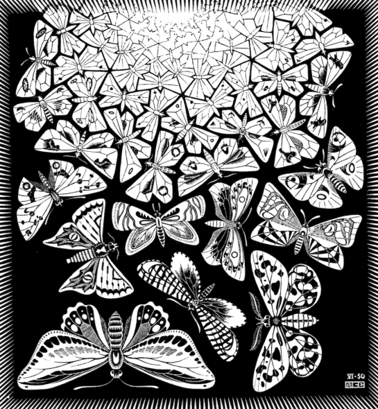 MC Escher's Butterflies Print