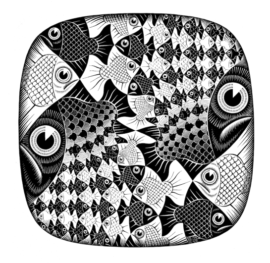 Escher's Fish and Scales