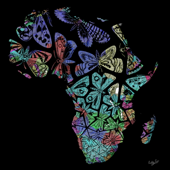 Escher's Butterflies Migrating Over the Rivers of Africa