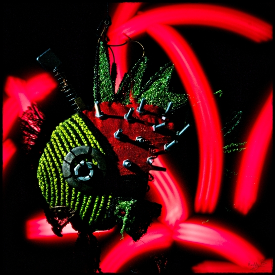 Light Painting Freddy (4), the Fibre Art Fish