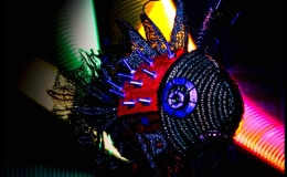 Light painting with Freddy, the Fibre ArtFish