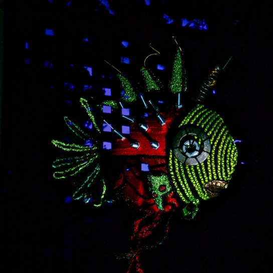 Light Painting Freddy (3), the Fibre Art Fish